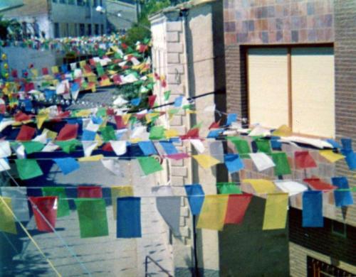 1981-08-30, II Centenari de l'arribada de la Reliquia, VIII sector