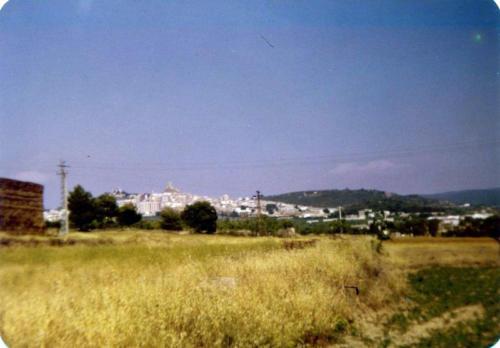 1981-08-30, Diverses