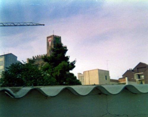 1981-08-30, II Centenari de l'arribada de la Reliquia, secteur VIII